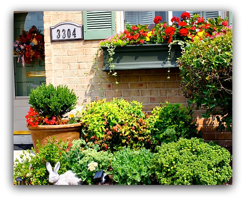 window box garden