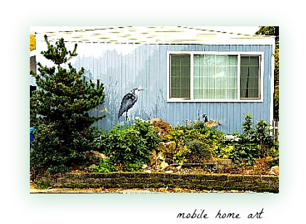 Bow Lake mobile home