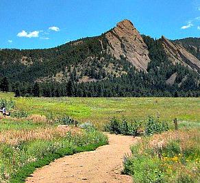 Colorado mountain and meadows