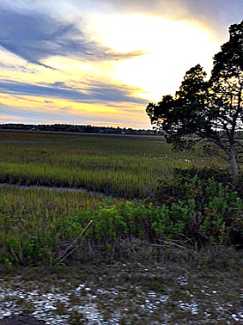 Pawleys Island marshes