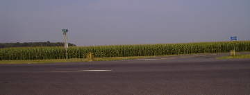 cornfields in Delaware