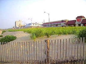 Rehoboth Beach dunes and boardwalk