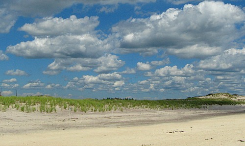 Robert Moses beach on Long Island NY