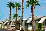 RV park models and palms