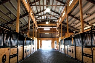 The Oaks at Lake City stables in Florida