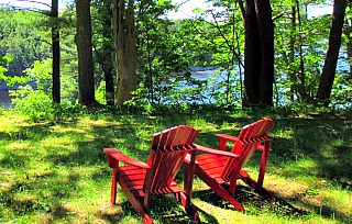 Wooded views at Avalon Village in Hampden Maine