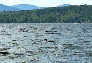 lake in New Hampshire
